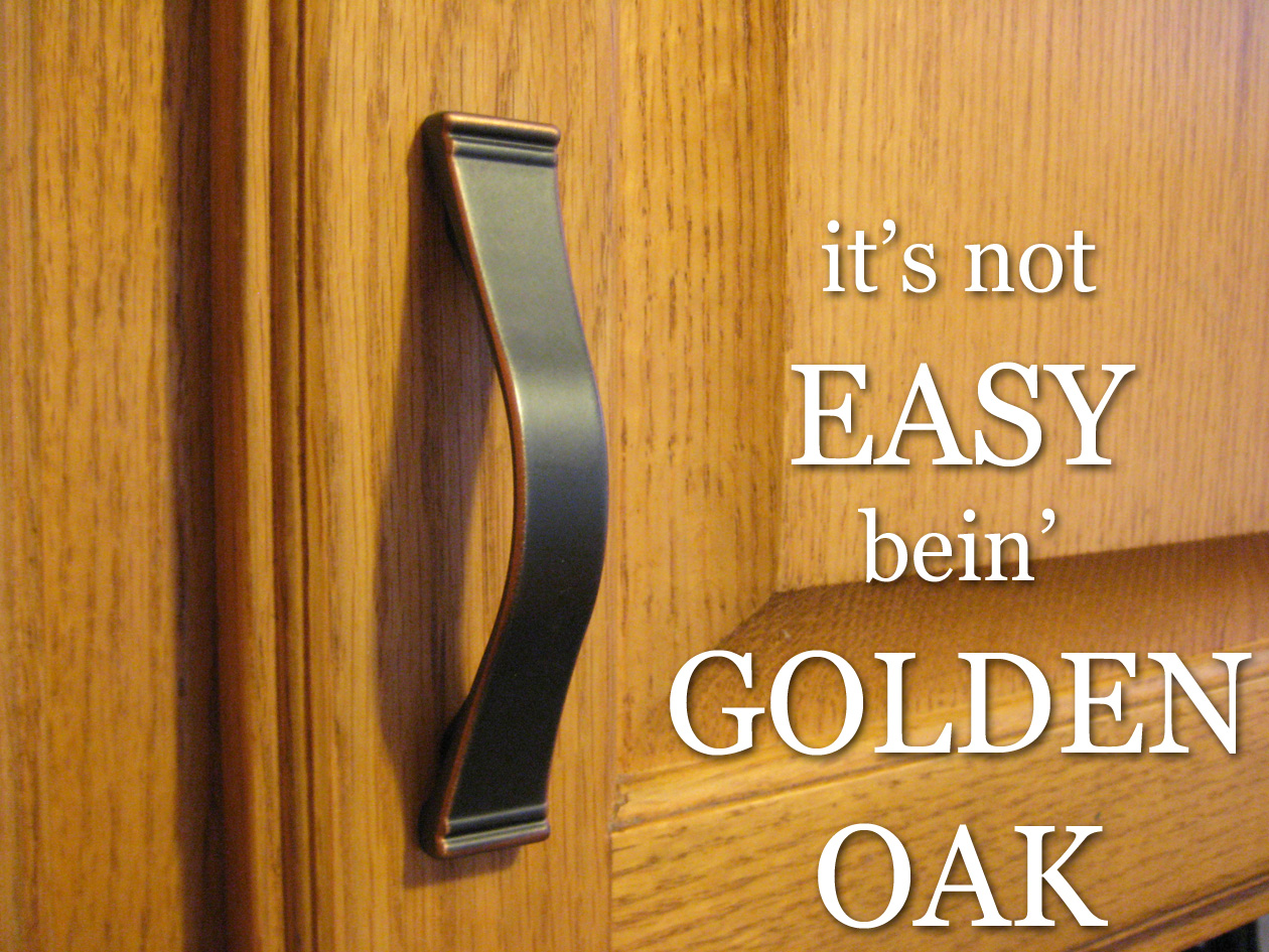 refacing oak kitchen cabinets to white kitchen cabinet updates Refacing Oak Kitchen Cabinets Kitchens Andrine