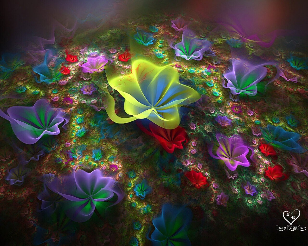 Amaging World: 3D Flowers Wallpapers
