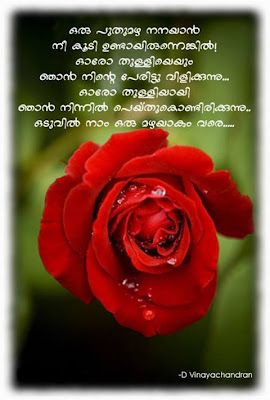 Malayalam Love Cards Copied From Other Sites