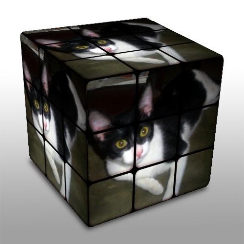 Pra fazer essa montagem no cubo é so entra nesse site clica em