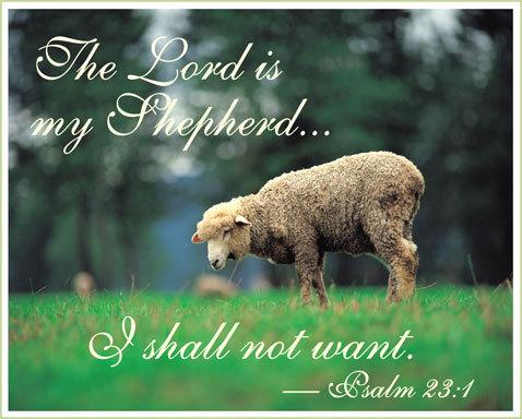 Seek Ye First: Psalm 23 explained beautifully  Seek Ye First: ...