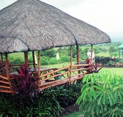 Davao Design Nipa Hut best for farm
