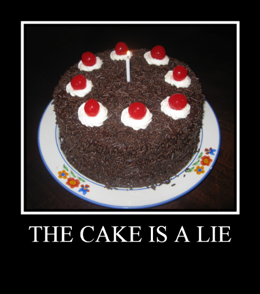 Homemaker's Guide to the Galaxy: The Cake Is A Lie