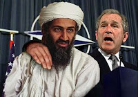 bush bin laden terrorista