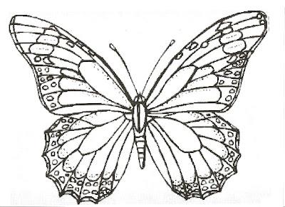 Büyük kelebek boyama sayfaları ödevleri resimleri dersleri