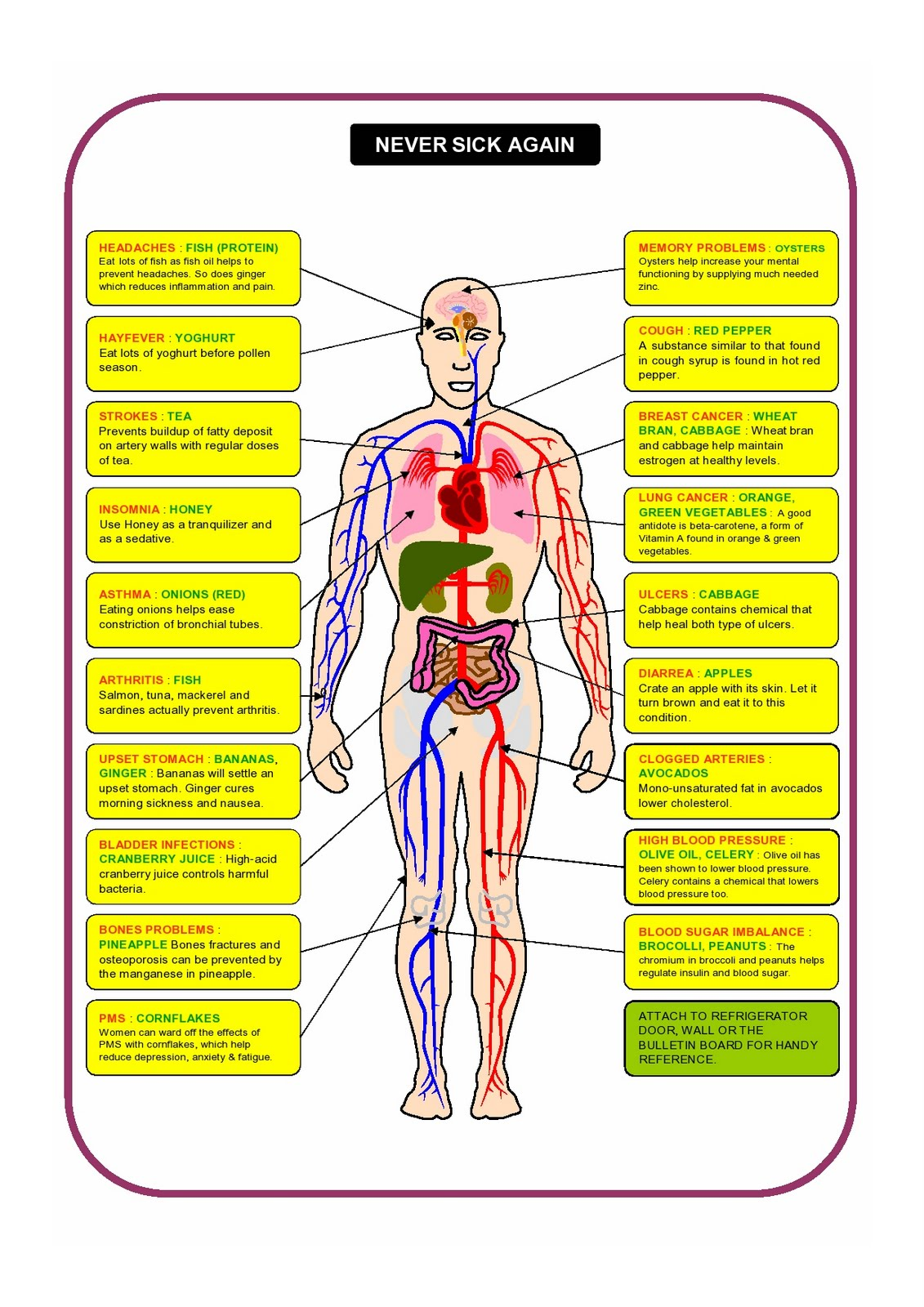 small resolution of never sick again chart never sick again diagram health care tips health facts