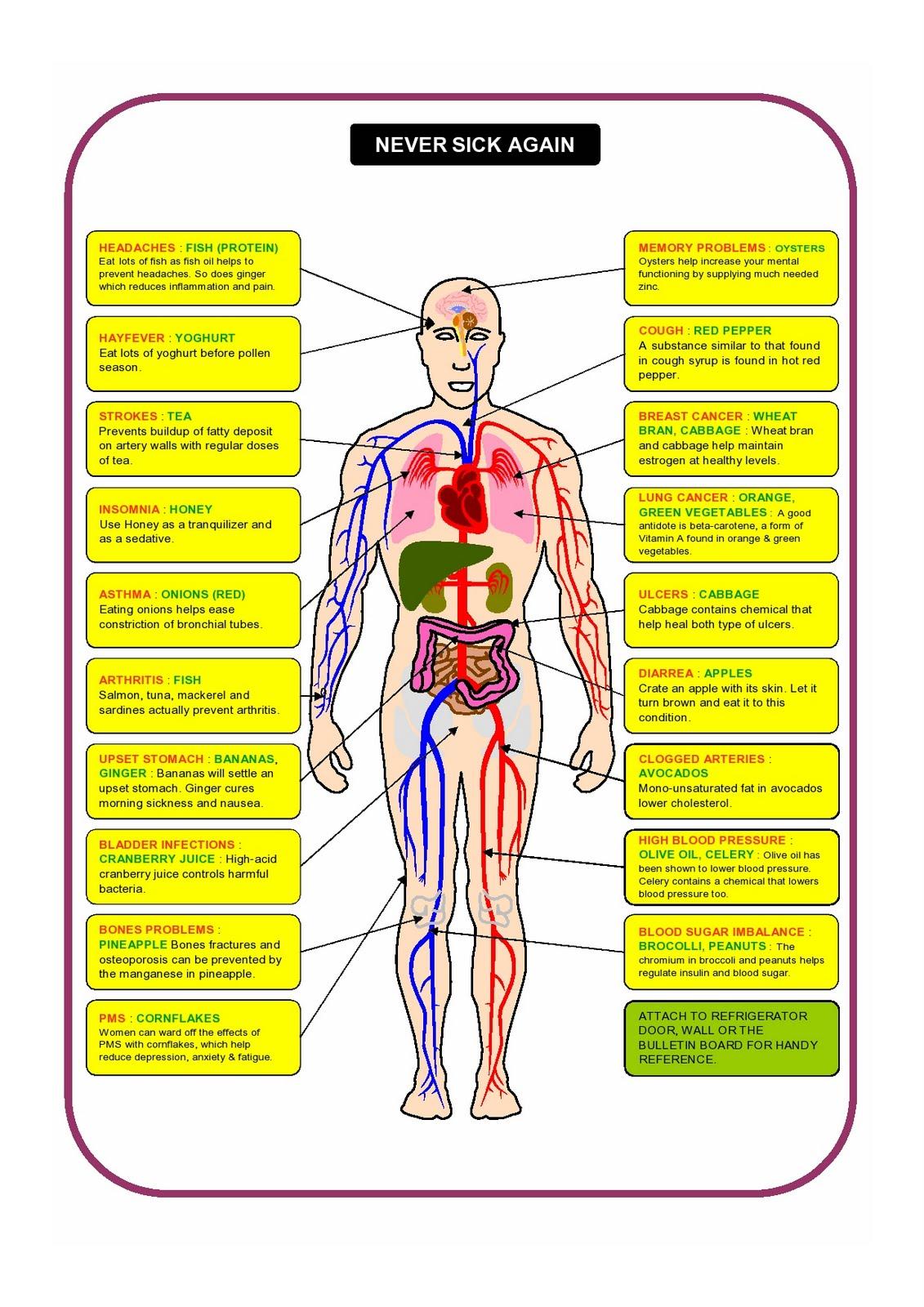 medium resolution of never sick again chart never sick again diagram health care tips health facts
