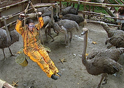 Lynne Franks and the Ostriches