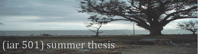 (iar501) summer thesis