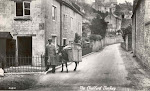 The Chalford donkeys of the past