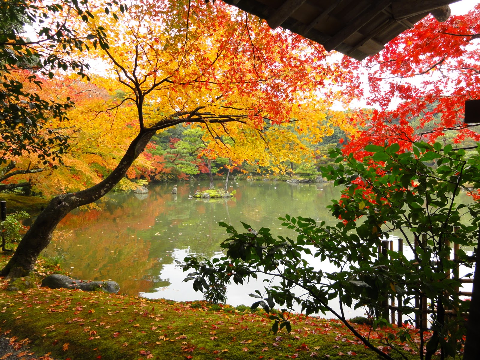 JAPAN_STATION: MUST TO KNOW #3: Four Seasons In Japan