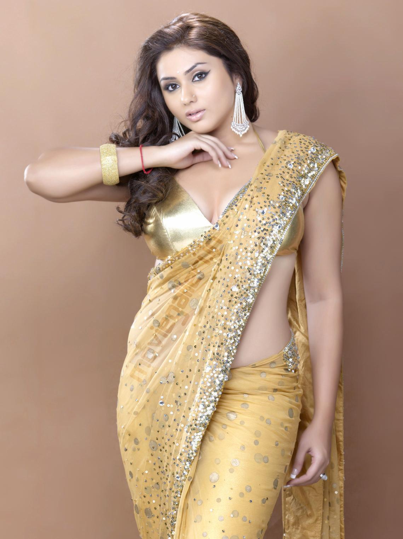 hot photoshoot in saree