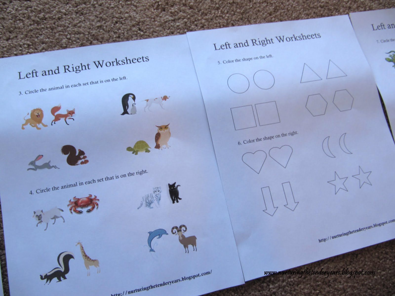 Nurturing The Tender Years Left And Right Worksheets