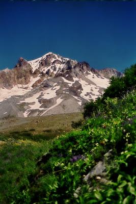 Mt Hood Hike