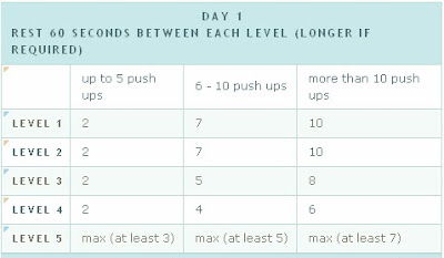Frugal Workout: Free Exercise Plan - 100 Push-Up Challenge