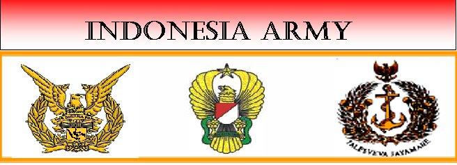 ARMADA TEMPUR INDONESIA