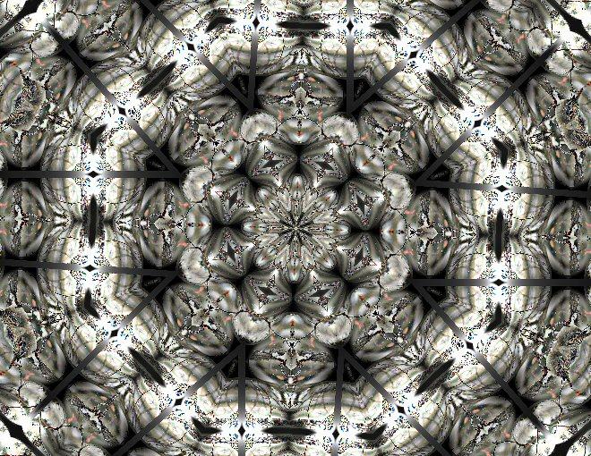 [Mus+in+Sneeuw+Kaleidoscoop+1.jpg]