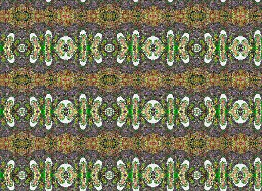 [monet+2+kaleidoscoop+5+rand+patroon.jpg]