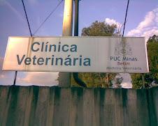Faculdade PUC - Clínica Veterinária