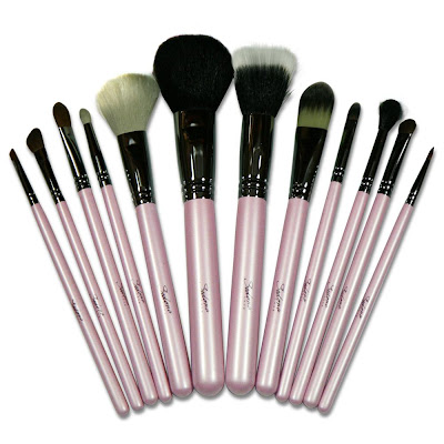 12 Piece Professional Makeup Brushes - Sedona Lace