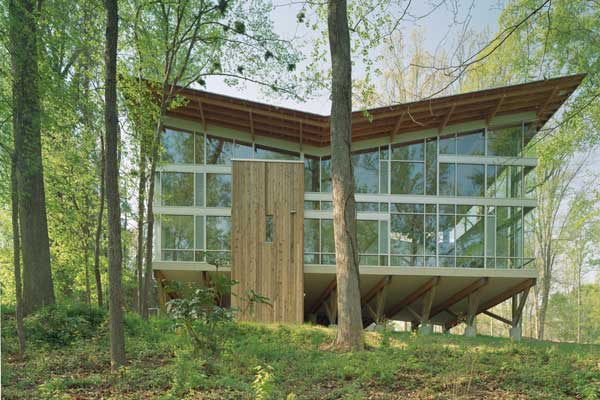 Modern Tree House Designed by Frank Harmon Architect