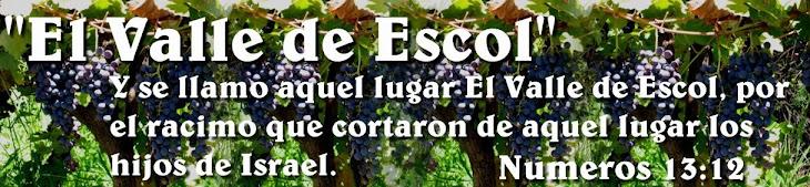 EL VALLE DE ESCOL