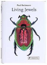 Favourite book: