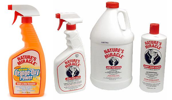 Clean Rabbit Urine Stains