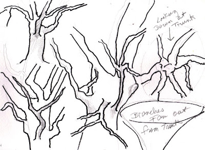 Foreshortening Tree Limbs - image  on https://lindablondheim.com