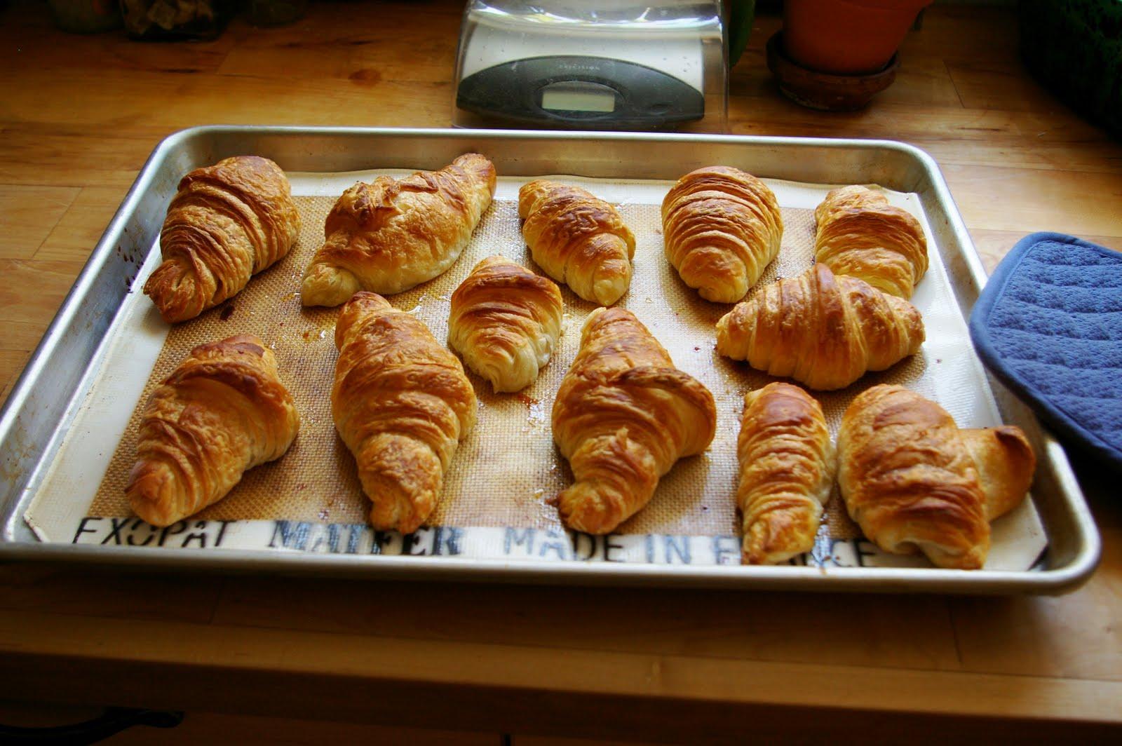 The Bobwhites: Croissants and des pains au chocolate (by Kat)