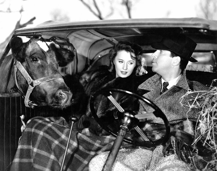 classic movie lovers know fred macmurray and barbara stanwyck complete with blonde wig as walter neff and phyllis dietrichson the adulterous murderous - Christmas Classic Movies