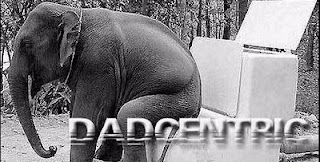 dadcentric logo