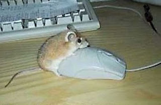 mouse humping computer mouse