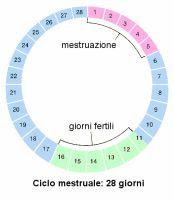 Calendario Dell Ovulazione.Calcolo Del Ciclo Mestruale Online E Automatico App E Siti