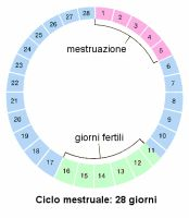 Calcolo del ciclo mestruale online e automatico (App e siti)