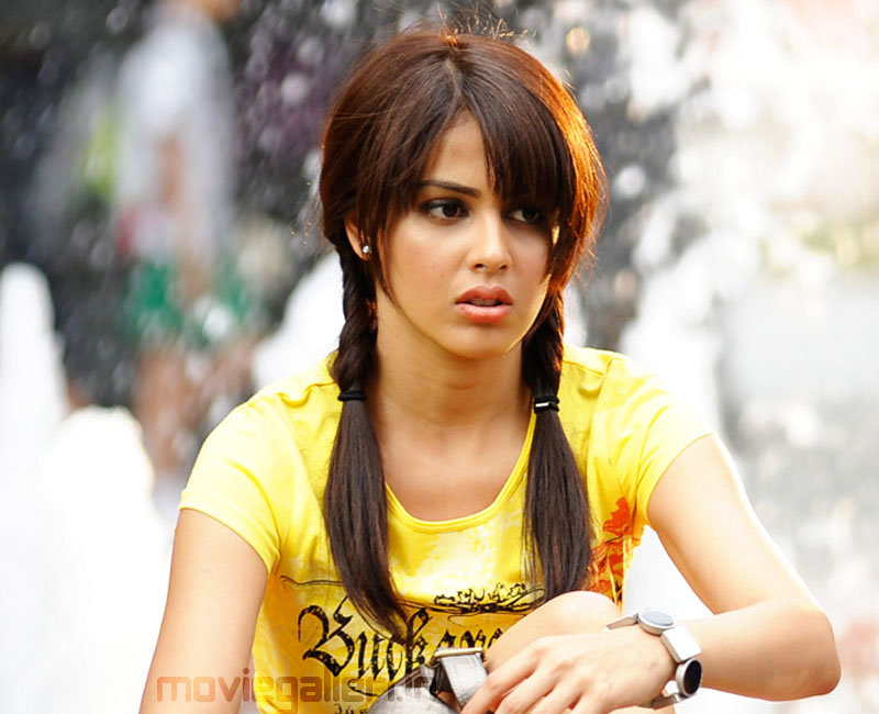Indian Cine Celebrities: Genelia d'souza