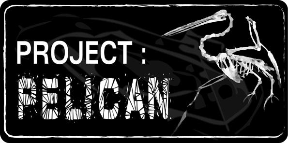 Project : Pelican