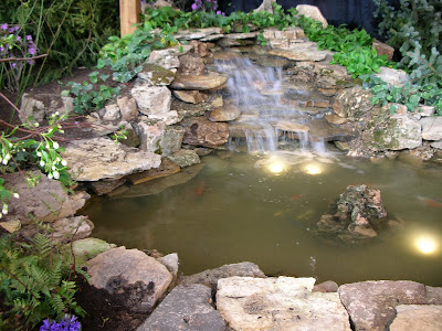 This water garden began as a derelict pond when the house