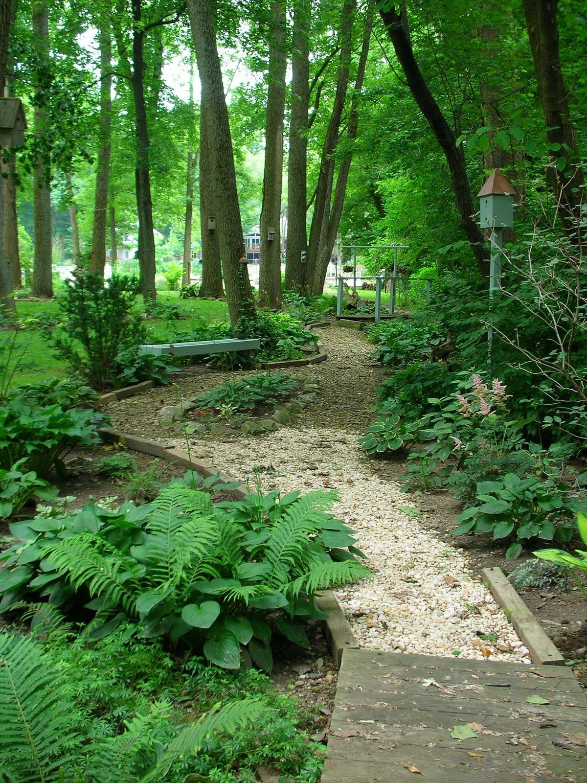 Designing the Woodland Garden on Wooded Backyard Ideas id=33360
