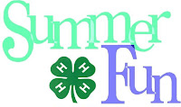 4-H summer fun