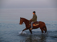 Horse on the Water - Paolo Pizzimenti