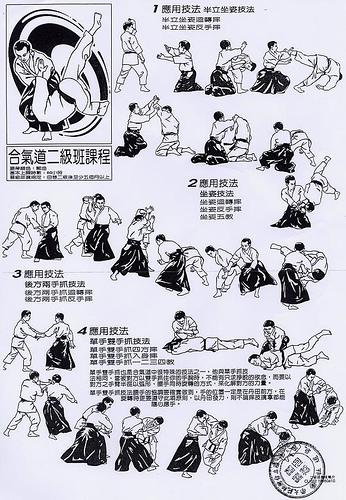 El rinc n del aikido enero 2011 for Tecnicas basicas de cocina pdf
