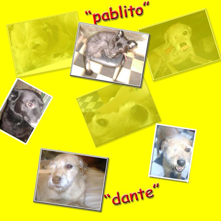 Dante y pablito