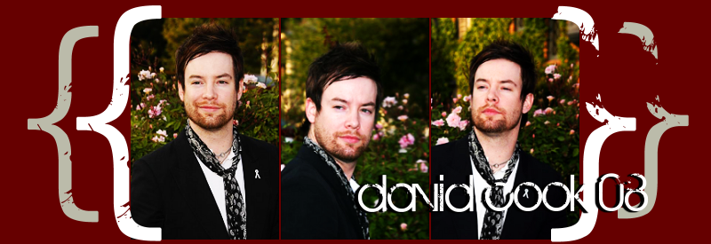 david cook 08 :: your american idol