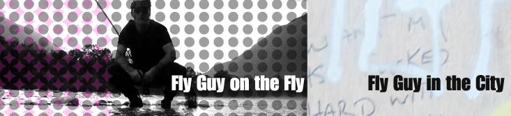 Fly Guy