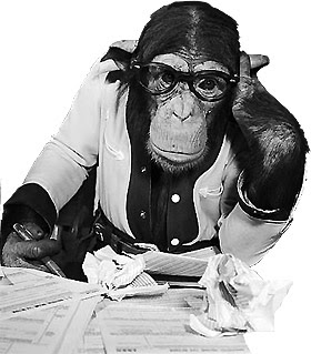 قرد-يفكر-يكتب-كالقرود-كالقردة-مضحك-كتاب