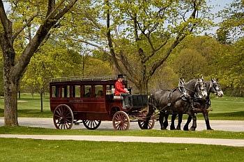 Percheron-Gespann vor einer Kutsche des Grand Hotels © Cornelia Schaible