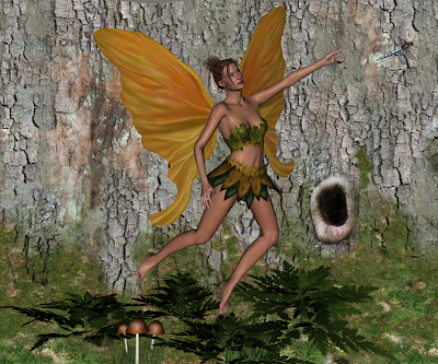 Fern Fairy : Follow that Dragonfly