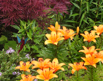 Fairy Among Daylilies