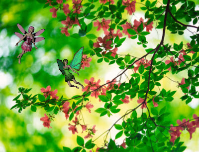 Flower fairies in mountain azalea